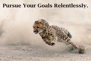 Pursue Your Goals Relentlessly.